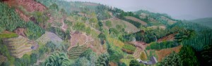 Yunnan Hillside panorama Cunningham copy