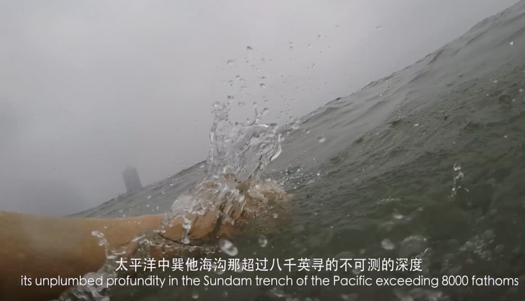 This image has an empty alt attribute; its file name is 1.-Swim-Duck-QingDao-still-Niamh-Cunningham-2019-lr-1-1-1024x588.png